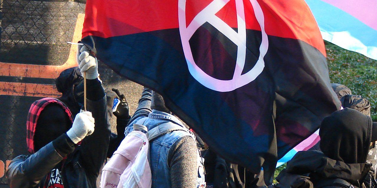 MSM IGNORES ANTIFA VIOLENCE AT MAGA PROTESTS