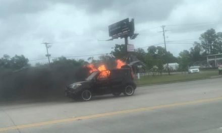 CAR INCINERATED ON MACARTHUR DRIVE